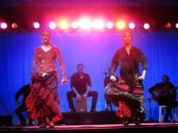 Australia - Woodford festival - IMG_7332