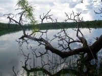 Cambodia - Banlung, Yaek Laom lake - IMG_4139