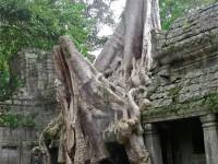 Alternativetraveling - Cambodia - Siem Reep - Angkor Wat, Angkor Tom, Byron - IMG_4628