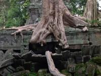 Alternativetraveling - Cambodia - Siem Reep - Angkor Wat, Angkor Tom, Byron - IMG_0757