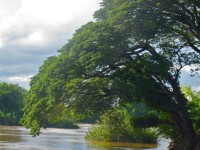 Laos - 4000 island - Don det, Alternativetraveling - IMG_3770