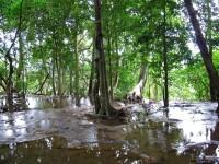 Laos - Laung Prabang & kuang si waterfalls - Alternative traveling - IMG_3306