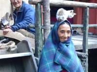 Trekking Nepal, Kathmandu, Annapurna Circuit Trek - DSC07464