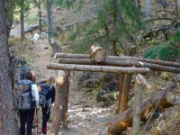 Trekking Nepal, Kathmandu, Annapurna Circuit Trek - DSC07496