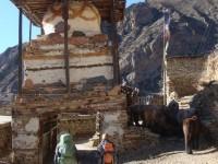Trekking Nepal, Kathmandu, Annapurna Circuit TrekDSC07660