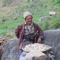 Alternativetraveling.com, Travel with Family, Alternative travel, alternative traveling, family travel, backpack, Nepal trekking, Tamang Herittege Trek, Langtang Trek, Himalaya mountains