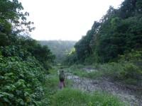 Philippines  -  Palawan, Cleopatra Niddle jungle trek, Batak tribe - P1000330