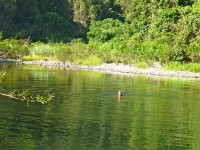 Philippines  -  Palawan, Cleopatra Niddle jungle trek, Batak tribe - P1000390