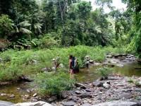 Philippines  -  Palawan, Cleopatra Niddle jungle trek, Batak tribe - IMG_1426