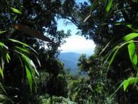 Philippines  -  Palawan, Cleopatra Niddle jungle trek, Batak tribe - IMG_1637