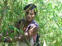 Philippines  -  Palawan, Cleopatra Niddle jungle trek, Batak tribe - IMG_1670