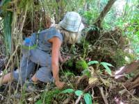 Philippines  -  Palawan, Cleopatra Niddle jungle trek, Batak tribe - IMG_1701