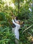 Philippines  -  Palawan, Cleopatra Niddle jungle trek, Batak tribe - P1000225