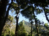 Philippines  -  Palawan, Cleopatra Niddle jungle trek, Batak tribe -