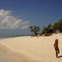 Philippines  -  Sablayan and Apo Reef - _DSC5082