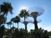 Singapore, Singapore City  - IMG_3770