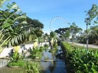 Singapore, Singapore City  - IMG_3776