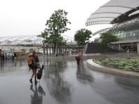 Singapore, Singapore City  - IMG_3849