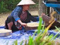 Vietnam  North - Tac Ba  lake and yao village  - IMG_2441