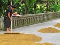 Vietnam  North - Tac Ba  lake and yao village  - IMG_2581