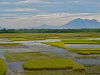 Vietnam  North - Tac Ba  lake and yao village  - IMG_2686