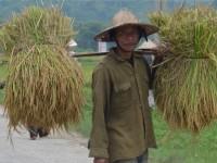 Vietnam  North - Tac Ba  lake and yao village  - IMG_2377