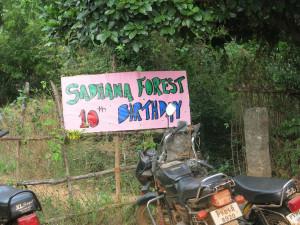 Alternativetraveling.com, India - Sadhana Forest - IMG_5645